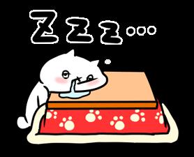 24753805