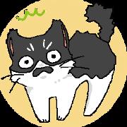 譚在鬍鬚的貓