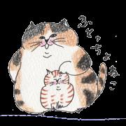 lovely fat cat