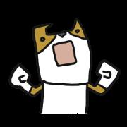 Cute Phoota is Corgi.