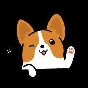 柯基犬卡卡 - 賣萌篇