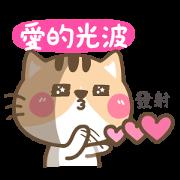 萌萌貓的傲嬌日常
