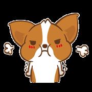 柯基犬卡卡 - 內心小劇場篇