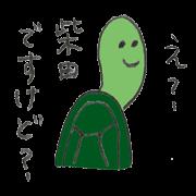 Turtle's name is Shibata2