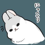 Machiko rabbit3
