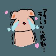 Akita is a dedicated sticker