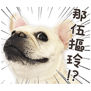 法鬥麻糬肥吱吱(活體演出篇)