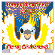 2017 Dance good Sulphur-Crested Cockatoo