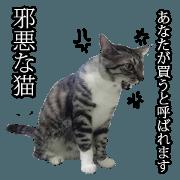Cat slaves necessary2(Japanese)