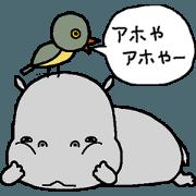 Stupid hippopotamus