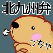 Kyapibara Kitakyushu valve