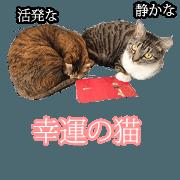 Cat slaves necessary(Japanese)