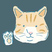 My cat Auchan