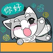 小灰貓的開勳日記