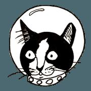 The universe Cat