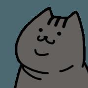 貓貓好夥伴-寶寶篇