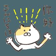 bilingual cat (JP-TW)