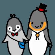 Penguin's grandpa & grandson