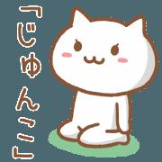 Cat for JUNKO