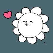 Pleasant Flower2