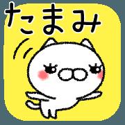 Tamamichan neko sticker
