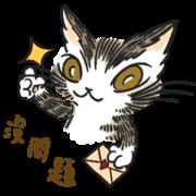 達洋貓-日常篇