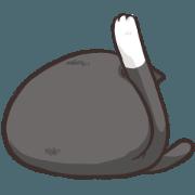 貓主子2-奶貓篇
