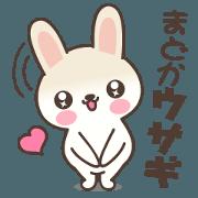 Madoka Rabbit