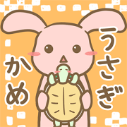 Rabbit and pet tortoise