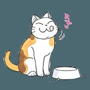 FukuFuku the Happy Cat