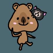 Quokka & Tasmanian devil