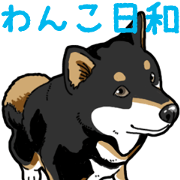 Wanko-Biyori Daily Black Shiba Inu 8