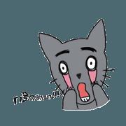 Lovely Cat(?)