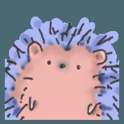 I am a hedgehog!