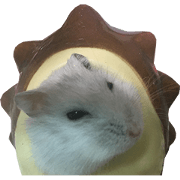 Omochi of the hamster
