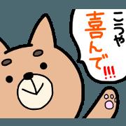 kouya sticker 2