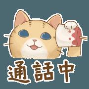 貓咪日和 - 實用應答篇
