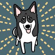 Black dog's life-Part 1