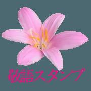 KiKi's Flower garden 2