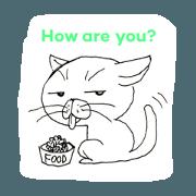 Humorous cat Kaz