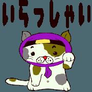 Cute ninja cat shadow