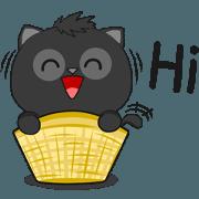 Black Cat (English)
