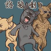 國寶台灣犬-人多卡大聲