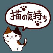 Feeling Of Cat
