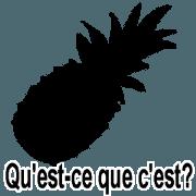 (法語)猜猜看這是什麼?9