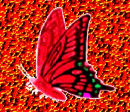 19969070