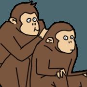 Halu Monkey - Animated