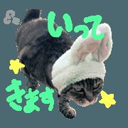 cat stamp by taisa