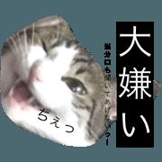 _Kirapu stamp5