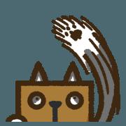 紙箱貓沒什麼表情